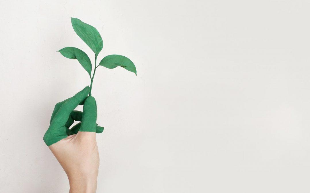 Duurzame oplossingen voor iedere vereniging van eigenaren